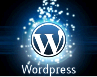wordpress-3-1-1_png_rb_